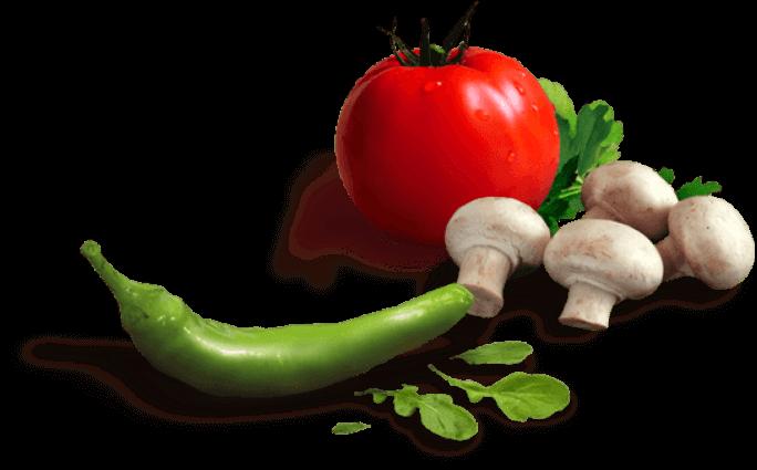 dieta para bajar de peso en Miami – dieta cetogenica dieta proteica mejor que dieta keto
